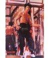 Poster Bruce Lee 013