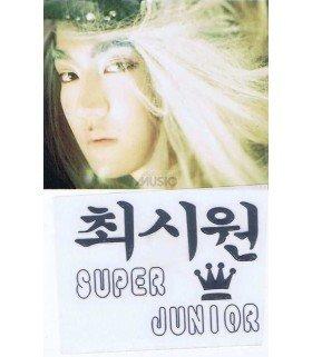 Sticker Métal Kyuhyun (Super Junior) 001