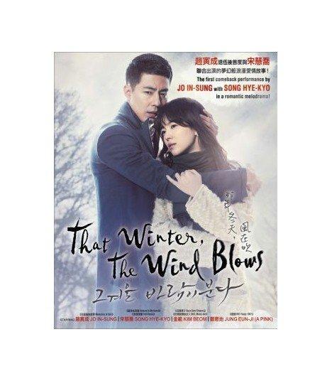 That Winter, the Wind Blows (그 겨울, 바람이 분다) - DVD DRAMA COREEN (SBS)