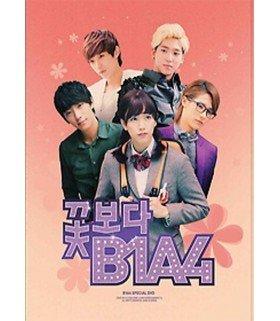 B1A4 (꽃보다) Boys Over B1A4 Special DVD (2DVD+PHOTOBOOK) (édition limitée coréenne)