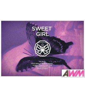 B1A4 (비원에이포) Mini Album Vol. 6 - Sweet Girl (Butterfly Version) (édition coréenne)