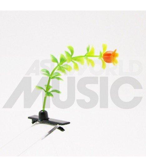 Plante à cheveux - Tulipe orange