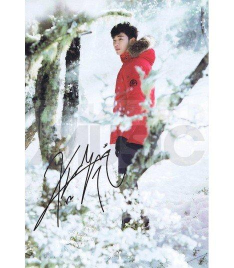 Poster (L) KIM SOOHYUN 002