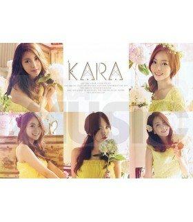 Poster (L)  Kara 020