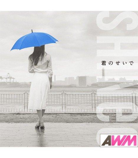 SHINee - Kimi no Sei de (SINGLE+DVD) (édition taiwanaise)
