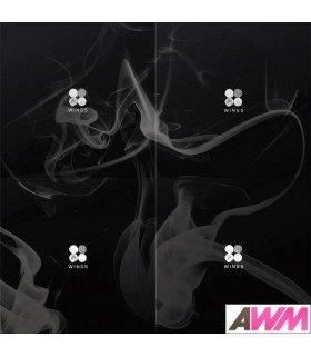 BTS (방탄소년단) Vol. 2 - WINGS (édition coréenne)