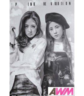 Affiche officielle Apink - Pink Revolution (Poster C / CHORONG & NAEUN)