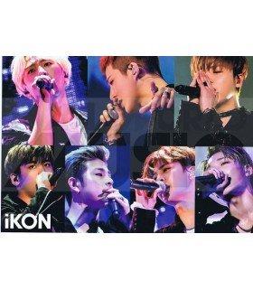 Poster L IKON 041