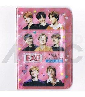 Porte carte EXO + 18 cards