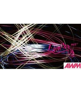 NCT 127 - Awaken (ALBUM + BLU-RAY) (édition limitée japonaise)