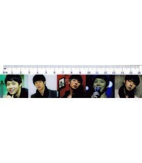 Règle 16cm JYJ (Yuchun) 004