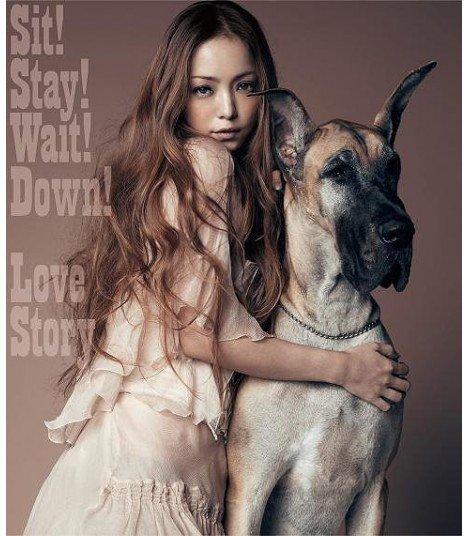Namie Amuro - Sit!Stay!Wait!Down! / Love Story (SINGLE+DVD)(édition japonaise)